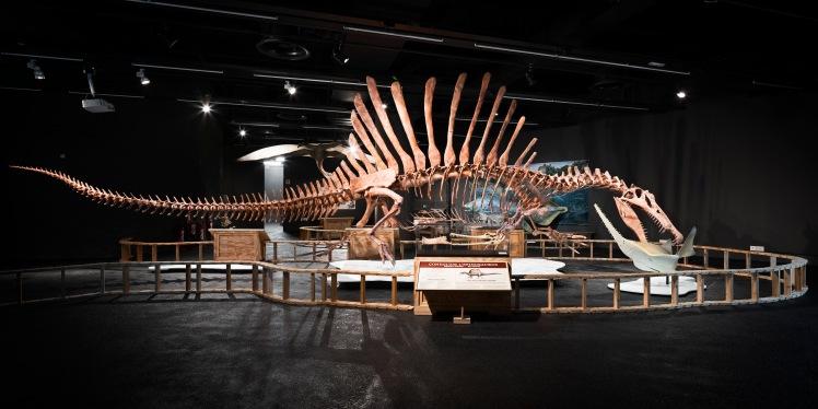 expo-spinosaurus